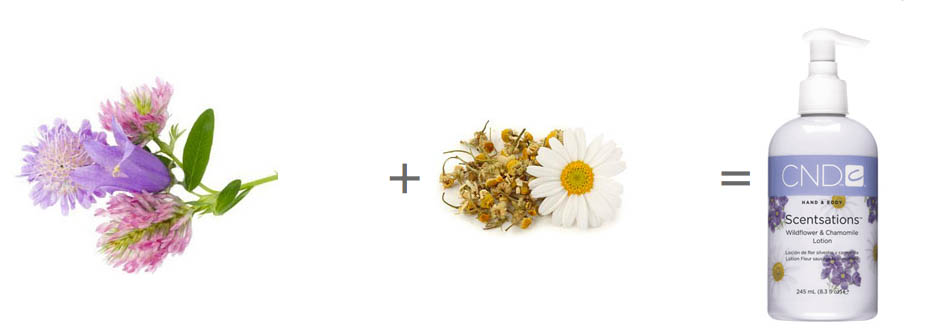 CND-SCENTSATIONS-WILDFLOWER-&-CHAMOMILE
